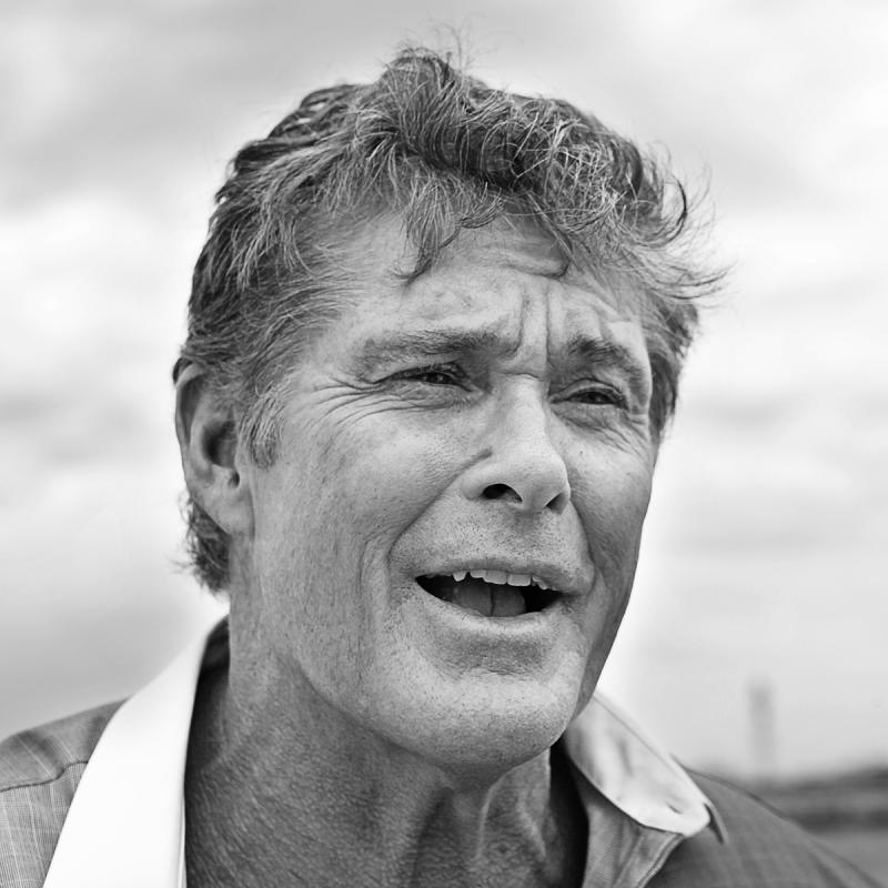 Portrait of David Hasselhoff by Julian Hanford